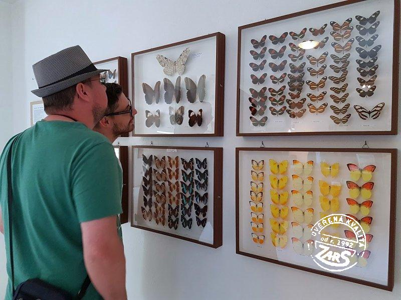 Foto Motýlí dům Karlovy Vary