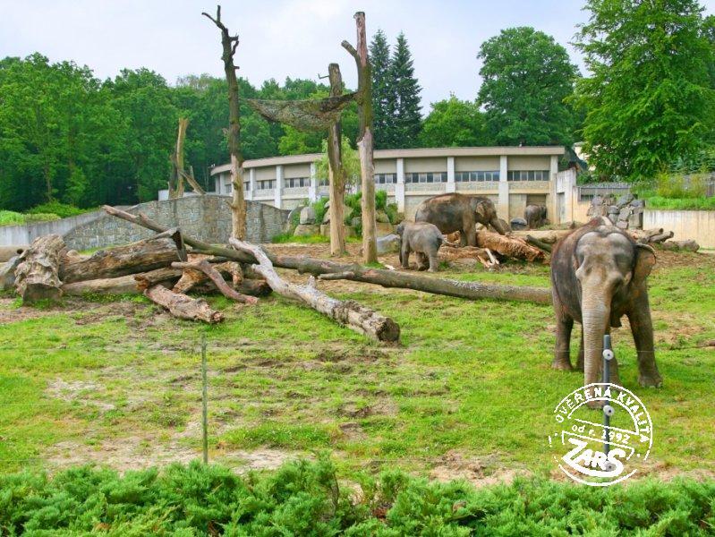 Foto Zoologická zahrada a botanický park Ostrava
