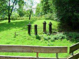Foto Babiččino údolí