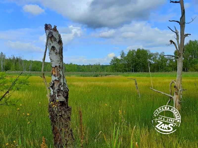 Foto Národní přírodní rezervace Soos