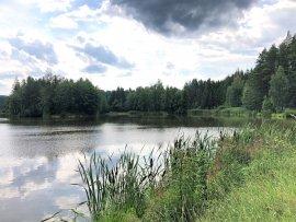 Foto Rybník U Dubu - Černá voda