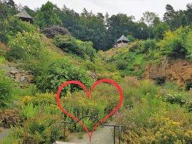 Foto Arboretum Paseka Makču Pikču