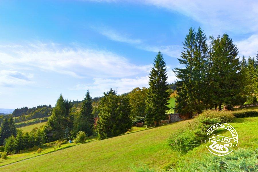 Chata Čenkovice k pronájmu, Orlické hory