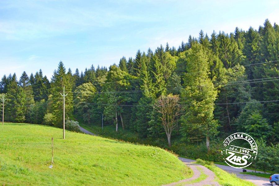 Chalupa Olešnice v Orlických horách II k pronájmu, Orlické hory