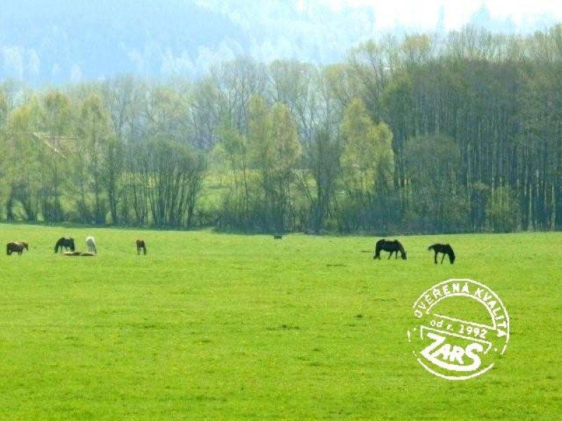 Foto Hory - 2012006