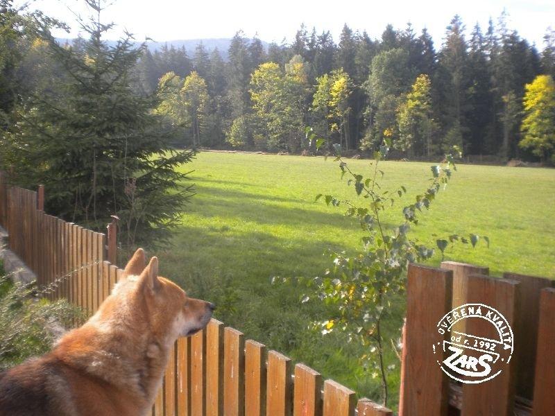 Chata Prachatice - Leptáč k pronájmu, Šumava a Lipno