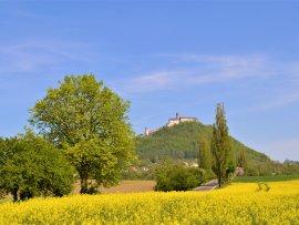 hrad Bezděz (zars)
